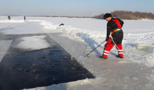 Заготовка льда  для ледяного городка