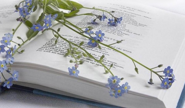 11 июня наградят победителей конкурса стихотворений о набережной